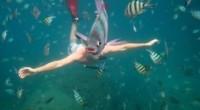 человек рыба