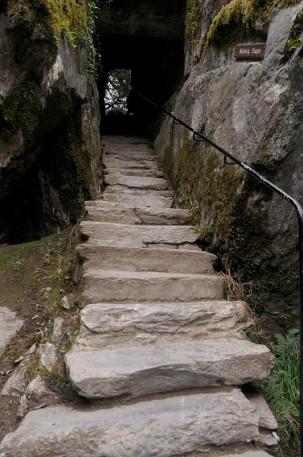 Лестница желанй